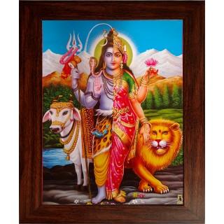 Shivan Paarvathi Arthanareeswarar Photo Frame
