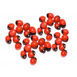 Mantra Siddha Chirmi Red Gunja Seeds for Lakshmi Upasna Sadhna Gurivinta Seeds - 21 Pieces Chirmi Beads