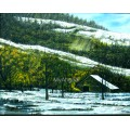 Snowfall Natural Scenary Oil Painting