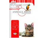 My First Big Book - Animals & Birds