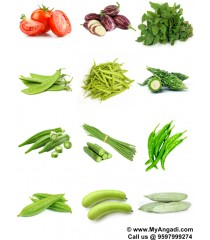 Vegetable Seeds - 12 Varieties - Basic Combo